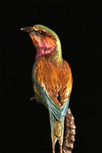 """African Jewel""- Lilac-breasted Roller15""H x 11""L x 5""WEdition 48 - $1800 African Jewel- Lilac-breasted Roller African bronze sculpture African wildlife art sculptures"