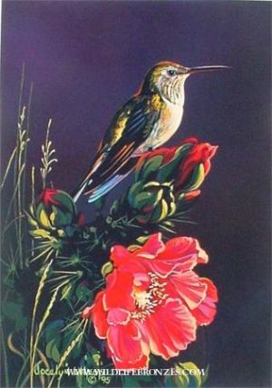 Jewel in the Thorns Hummingbird - Prints Only - Running Wild Studio Original Paintings Limited Edition Reproductions