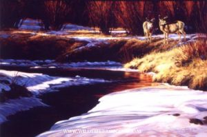 "Winter Reprieve"" - Original Sold - Running Wild Studio Original Paintings Limited Edition Reproductions"