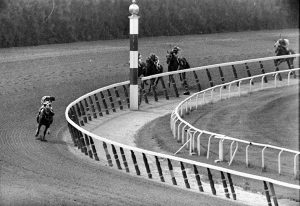Jockey Ron Turcotte, aboard Secretariat, turned for a look at the field as they made the final turn on the way to winning the Belmont Stakes and the Triple Crown in 1973. Dave Pickoff AP